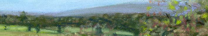 [ pastel by Patty Rice, www.PattyRice.com ]